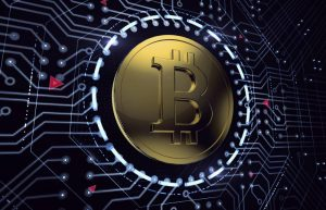 How To Buy A Accept Bitcoin Payments On Your Website On Tight Finances